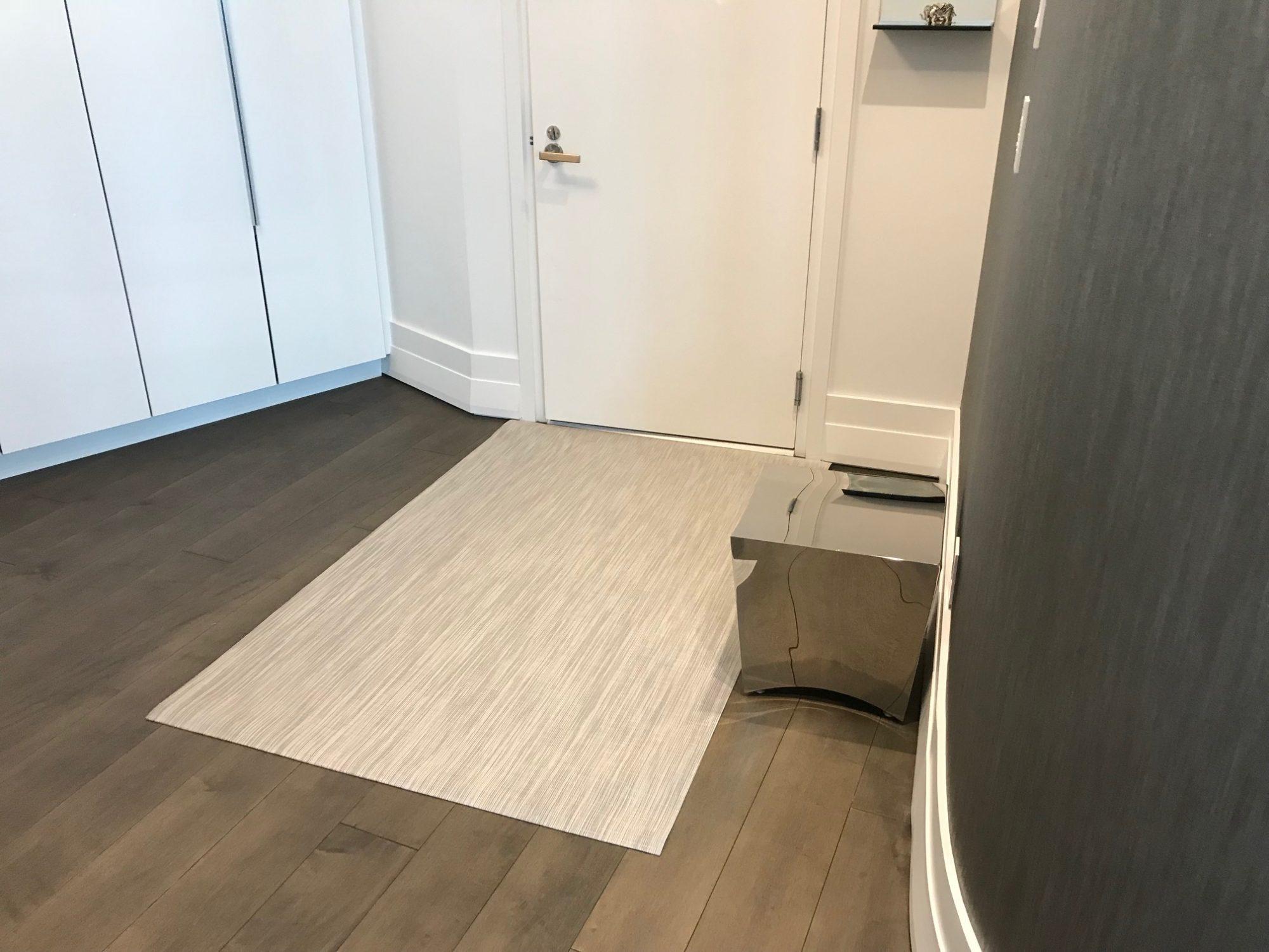 ARYA rugs Entrance1