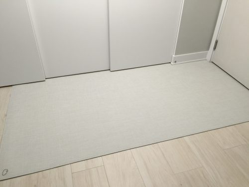ARYA rugs Entance8
